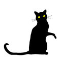 Black cat sitting with it s paw raised Royalty Free Stock Photos