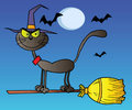 Black cat which fly a broom in night Royalty Free Stock Image
