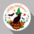 Black cat in witch hat, pumpkin and hand drawn text