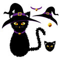 Black Cat with Yellow Eyes. Witch Hat, Purple Collar and Golden Ball Bell. Halloween Day. Vector Illustration Royalty Free Stock Photo