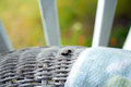 A black caterpillar with yellow spots crawls along a wicker chair the back of worn white Royalty Free Stock Photography