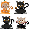 black cats in costume halloween character Royalty Free Stock Photo