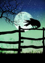 Black crow on the fence Stock Image