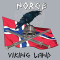 Black crow sitting on a Viking helmet, crossed swords on the background of the Norwegian banner Royalty Free Stock Photo