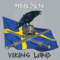 Black crow sitting on a Viking helmet, crossed swords on the background of the Sweden banner Royalty Free Stock Photo
