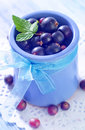 Black currant in blue bowl Stock Photos