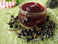 Black currant jelly Stock Image
