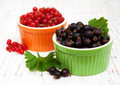Black currant and red currant Royalty Free Stock Photo