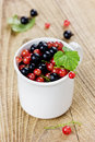 Black currant and red currant in a white cup Royalty Free Stock Photo