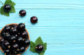 Black currant in wooden bowl with green leaf on blue wooden background Royalty Free Stock Photo