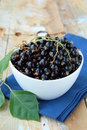 Black currants ripe and natural Royalty Free Stock Photography