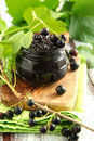 Black current jam in jar Stock Images