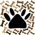 Dog footprint and bones.