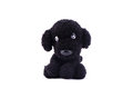 Black dog knitting doll Royalty Free Stock Photo