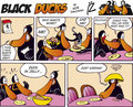 Black Ducks Comic Strip episode 15 Royalty Free Stock Photos