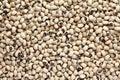 Black eyed peas Royalty Free Stock Photo