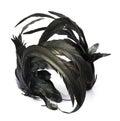 Black feather headband