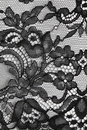 Black fine lace floral texture Stock Images