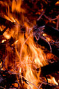 Black Firewoods in fire wirh read coal Royalty Free Stock Images