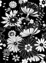 Black floral background Stock Images