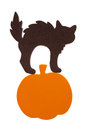 Black foam cat on pumpkin an orange isolated white Royalty Free Stock Photos