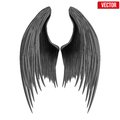 Black folded angel wings vector illustration isolated on white background Royalty Free Stock Images