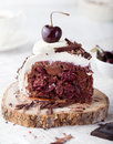Black forest cake ,decorated with whipped cream and cherries Schwarzwald pie Royalty Free Stock Photo