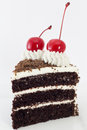 Black forest cake a slide of Stock Images