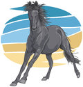 Black galloping horse illustration of a towards you Royalty Free Stock Photo