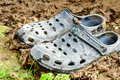 Black garden shoes of crocs style