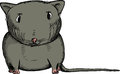 Black Gerbil Stock Images