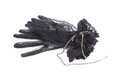 Black gloves with lace and black jewelry necklace Royalty Free Stock Photo