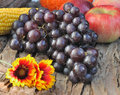 Black grapes bunch of with red apples on wooden background Stock Images