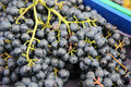 Black grapes at farmer s market Stock Images