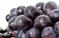 Black grapes purple closeup up photo Royalty Free Stock Photography