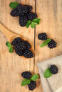 Black and green sweet blackberry on wooden table Stock Image