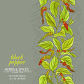 Black ground pepper vector background