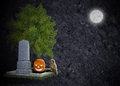 Black halloween background grave moon owl  pumpkin Stock Image