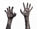 Black hand of death the walking dead zombie theme halloween theme zombie hands white background mummy hands devil Stock Image