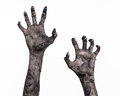 Black hand of death, the walking dead, zombie theme, halloween theme, zombie hands, white background, mummy hands Royalty Free Stock Photo