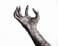 Black hand of death, the walking dead, zombie theme, halloween theme, zombie hands, white background, mummy hands
