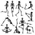 Black Human Skeletons Background Royalty Free Stock Photo