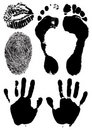 Black ink stamps of human hands, foots and finger Royalty Free Stock Photos