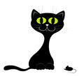 Black kitten. Royalty Free Stock Images