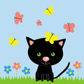 Black kitten with butterfly Royalty Free Stock Photo