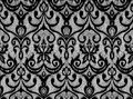 Black lace Royalty Free Stock Photo