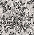 Black lace. Seamless Pattern. Royalty Free Stock Photo