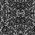 Black lace texture Royalty Free Stock Photos