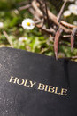 Black leather bible and thorn branch closeup Royalty Free Stock Photography
