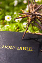 Black leather bible and thorn branch closeup Stock Images